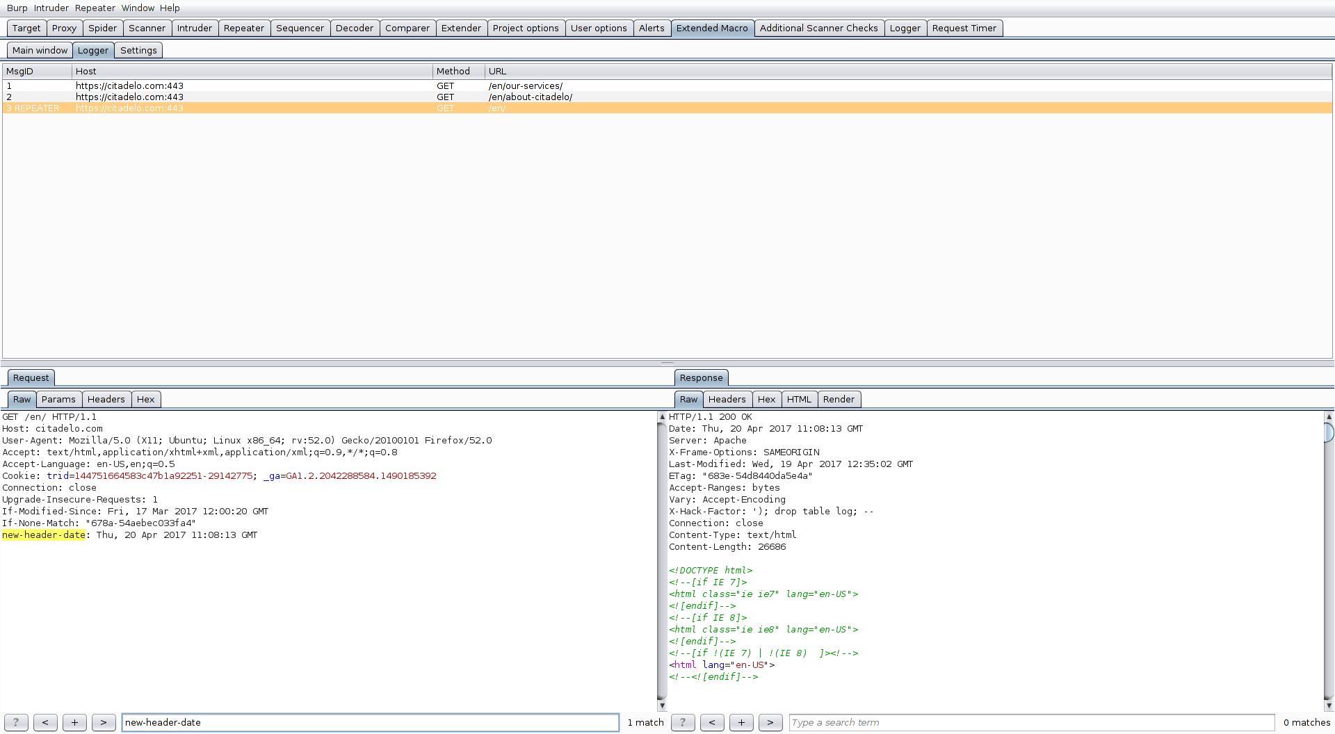 ExtendedMacro – BurpSuite plugin - Citadelo
